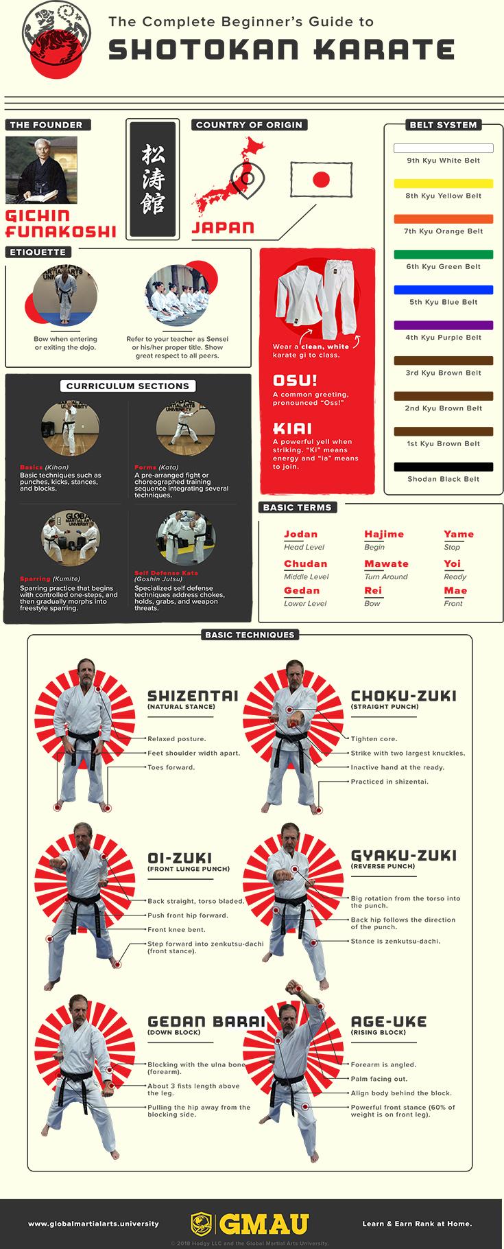 Shotokan Beginner Infographic - Full