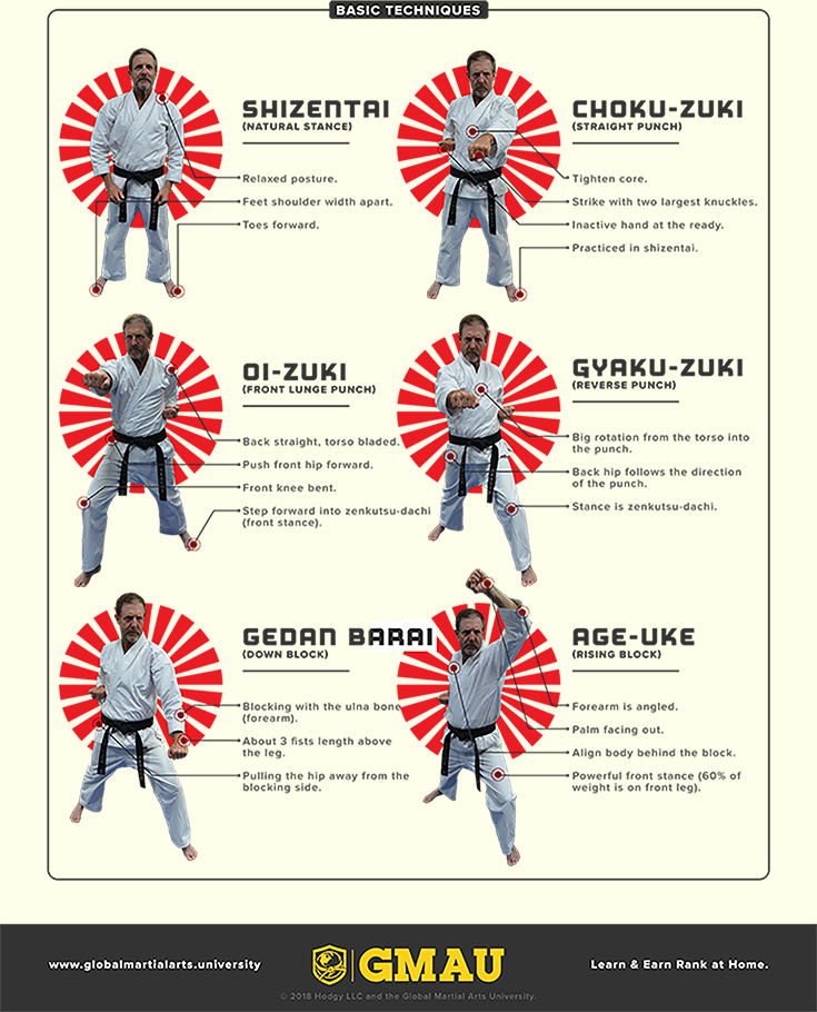 Shotokan Infographic 2