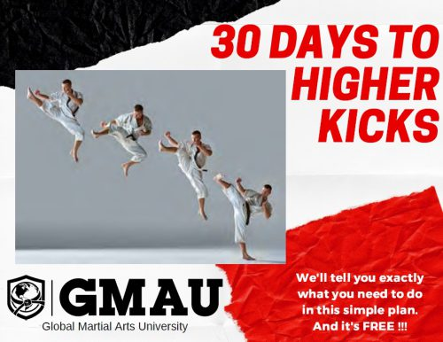 30 Days to Higher Kicks
